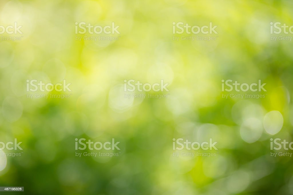 Abstract green defocused summer background with bokeh stock photo