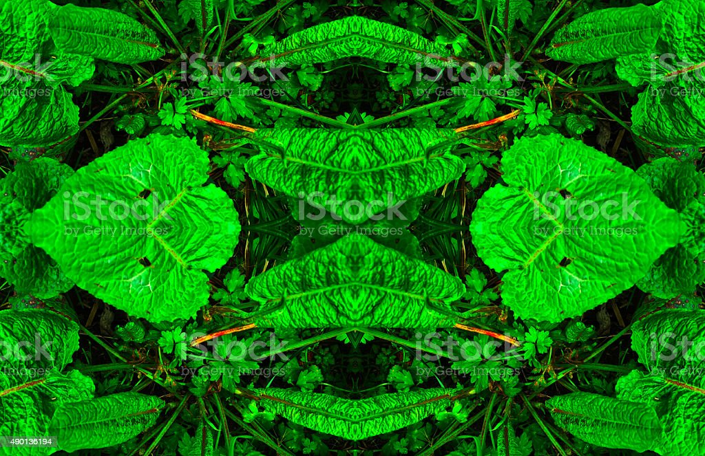 Abstract green leaves nature background royalty-free stock photo