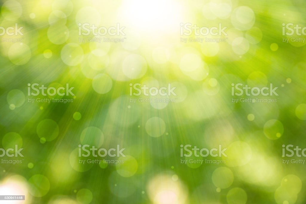 Abstract Green Natural Defocused Lights stock photo