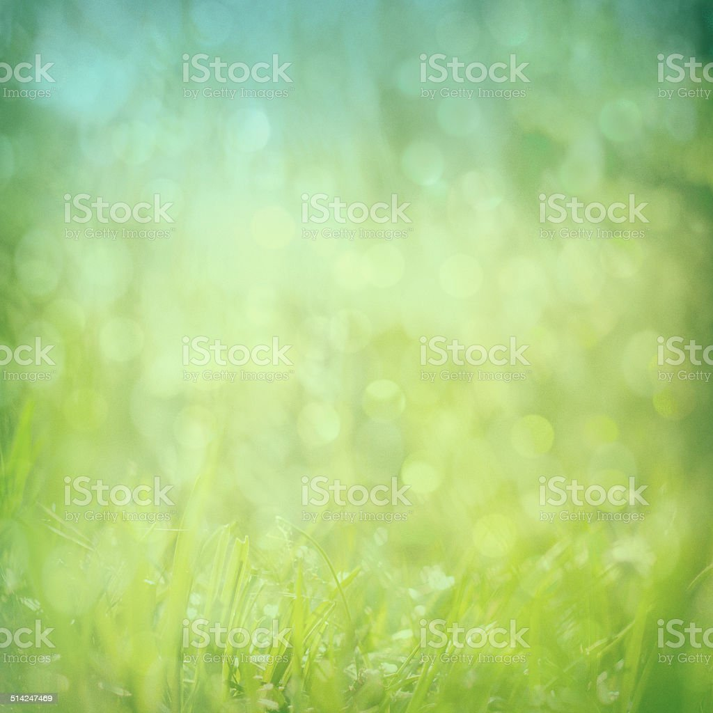 abstract green nature background stock photo