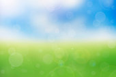 abstract green spring with bokeh sunlight background