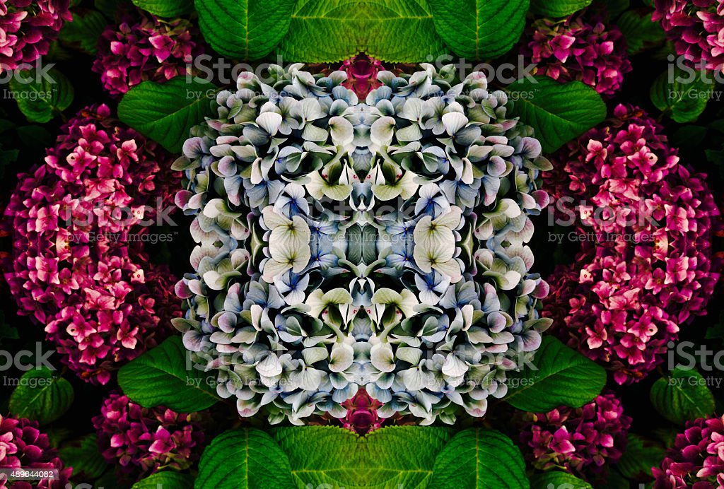 Abstract Hydrangea Themed Flower Collage #2 royalty-free stock photo