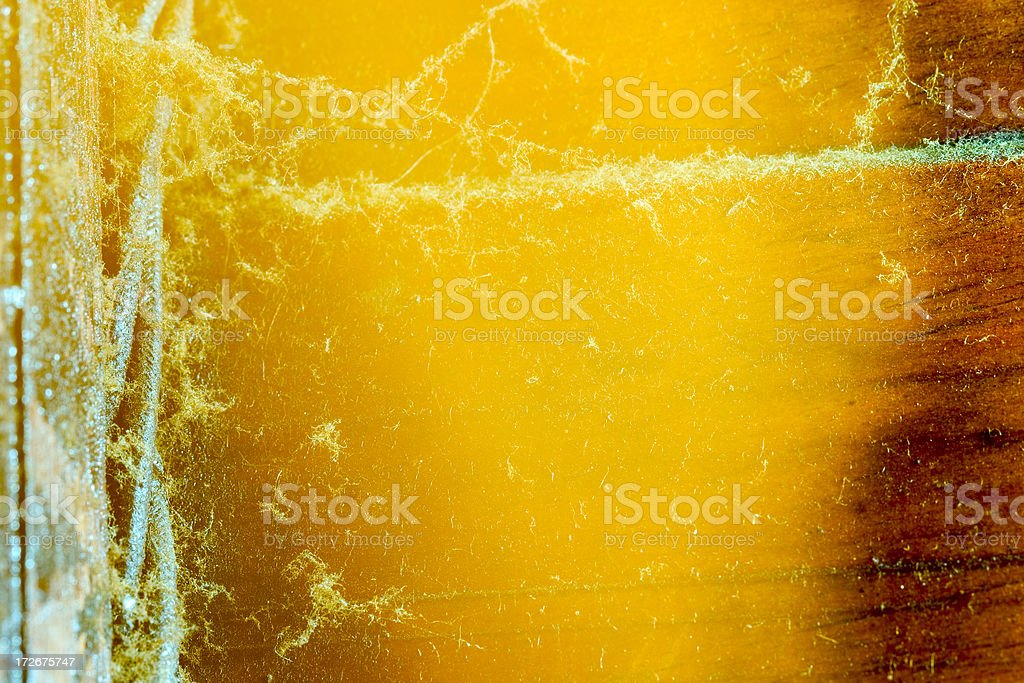 Abstract Ice royalty-free stock photo