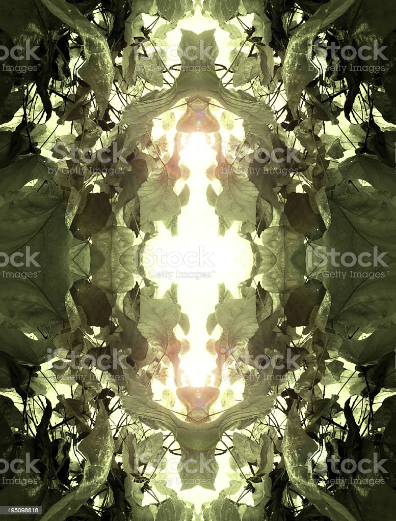 Abstract leaf kaleidoscope background royalty-free stock photo