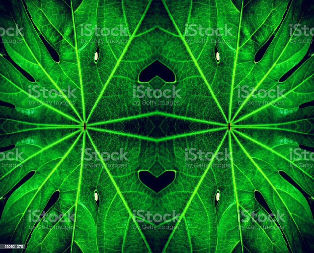 Abstract leaf kaleidoscope design stock photo