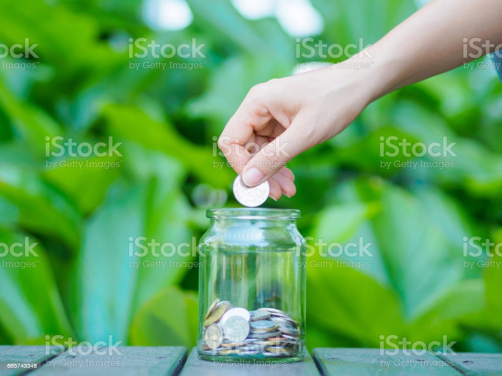 abstract money saving women hand put coin to glass jar Coins on wood table with green tree background stock photo