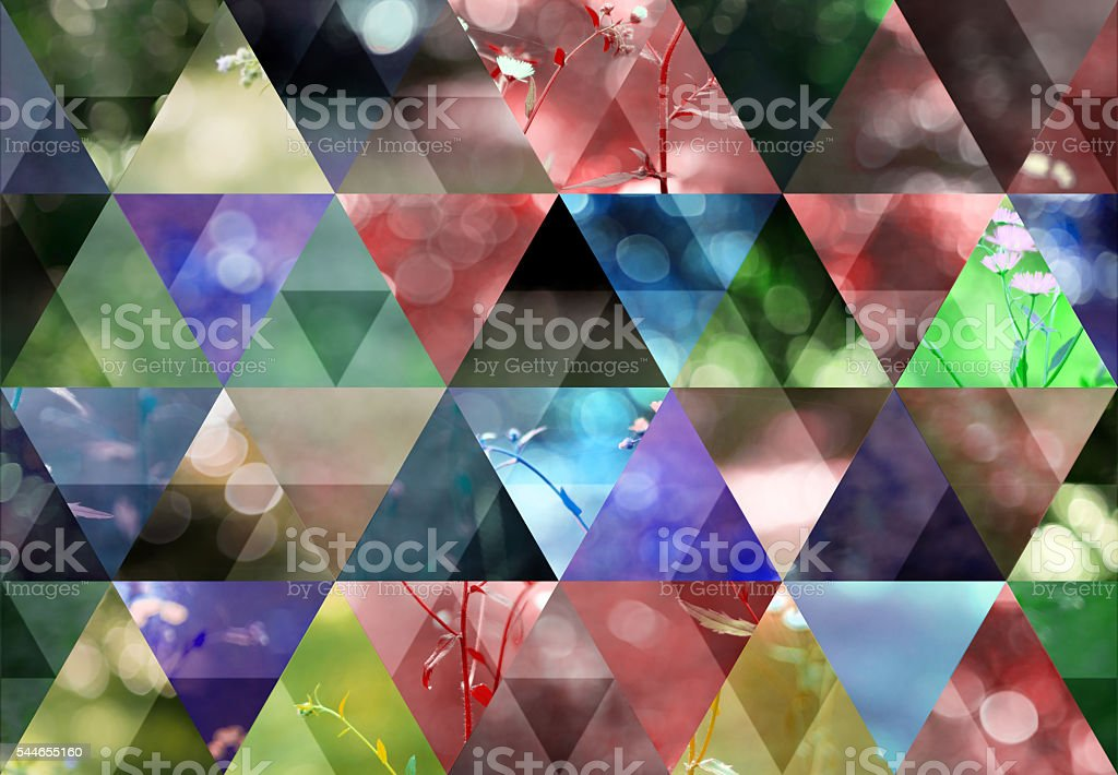 Abstract multicolored triangle shaped background: Wild grass and flowers stock photo