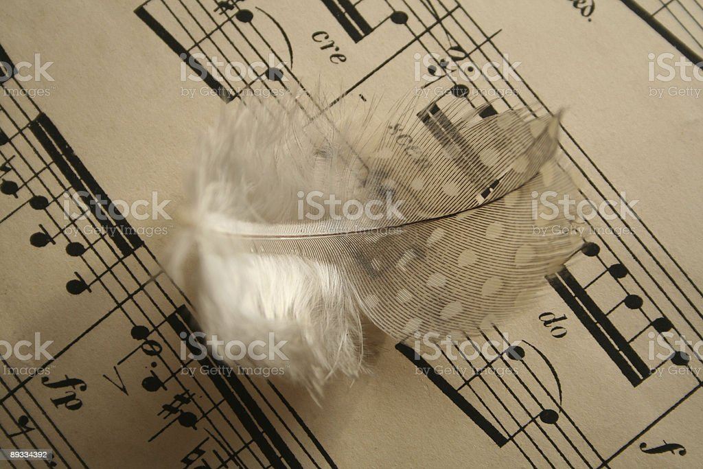 Abstract music feather royalty-free stock photo