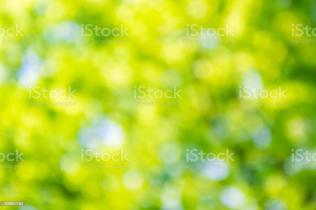 Abstract natural green color background. stock photo
