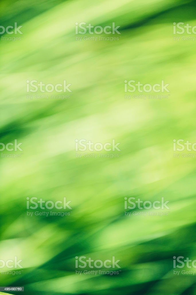 Abstract nature background in shades of green stock photo