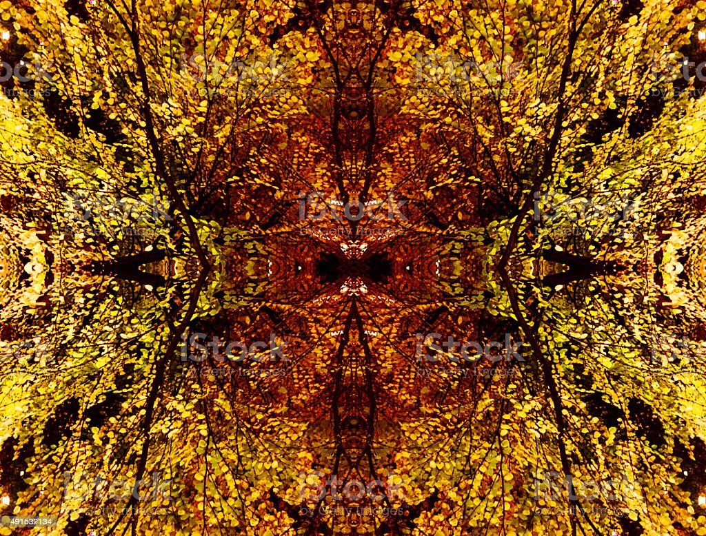 Abstract nature kaleidoscope of plant leaves at night royalty-free stock photo