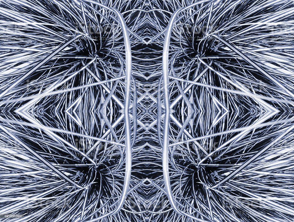 Abstract nature kaleidoscope of plant leaves royalty-free stock photo