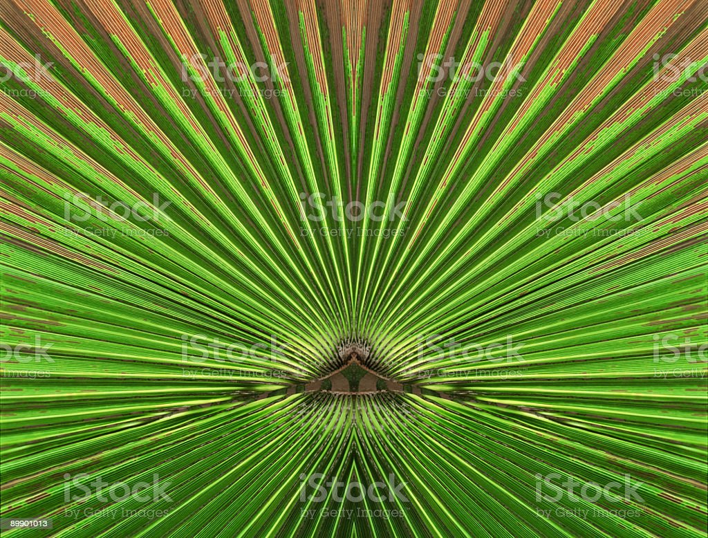 Abstract Nature - like a tunnel royalty-free stock photo