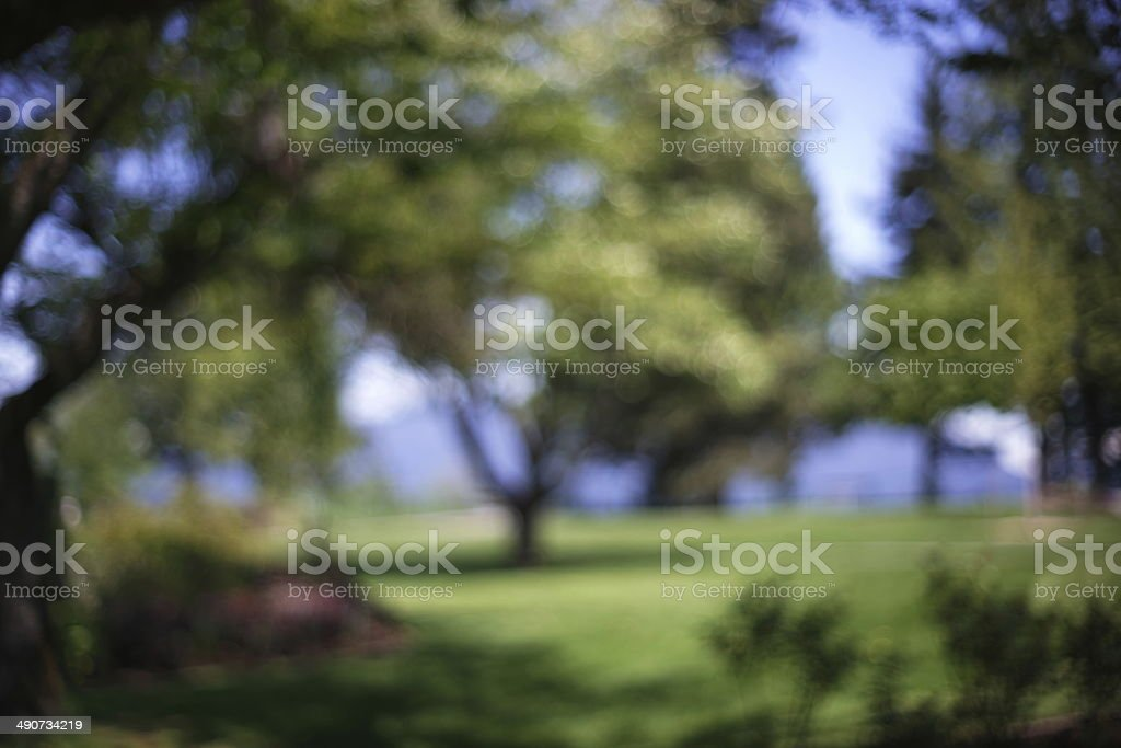Abstract Of Green Space stock photo
