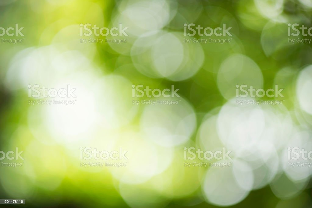 Abstract out of focus with green nature background stock photo