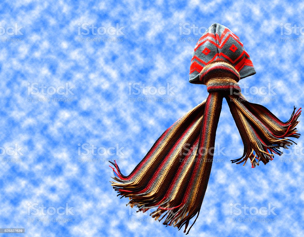 Flying Octupus stock photo