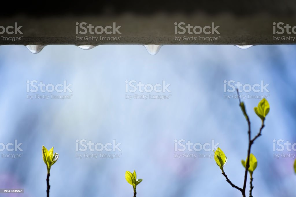 abstract stock photo
