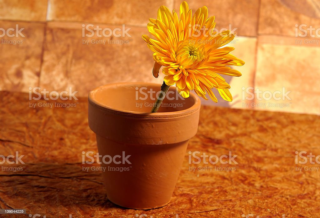 Abstract Potted Flower 4 royalty-free stock photo