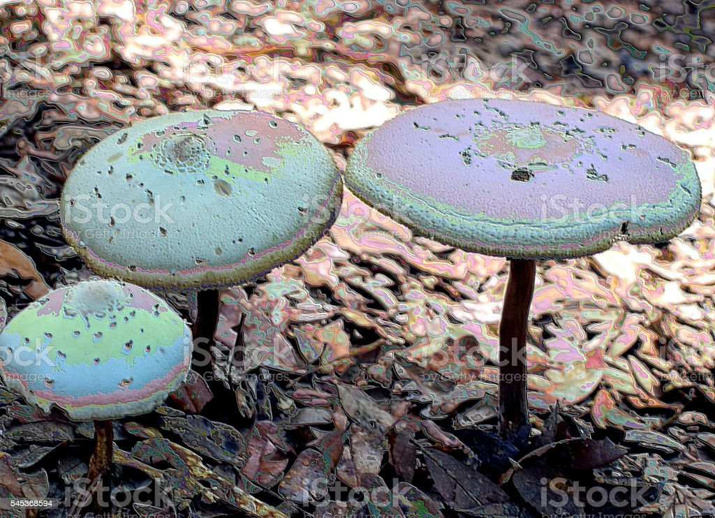 Abstract Psychedelic Mushrooms stock photo