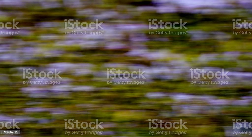 Abstract Purple and Green Background stock photo