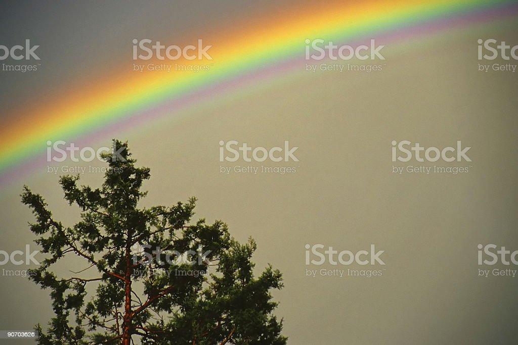 abstract rainbow and tree royalty-free stock photo