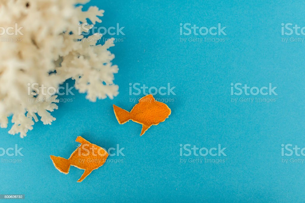 abstract reef fished stock photo