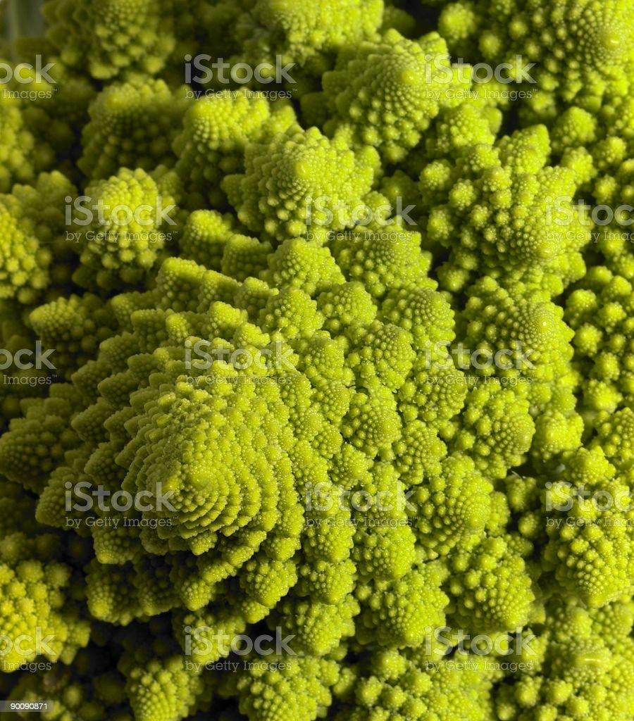 abstract romanesco cauliflower royalty-free stock photo