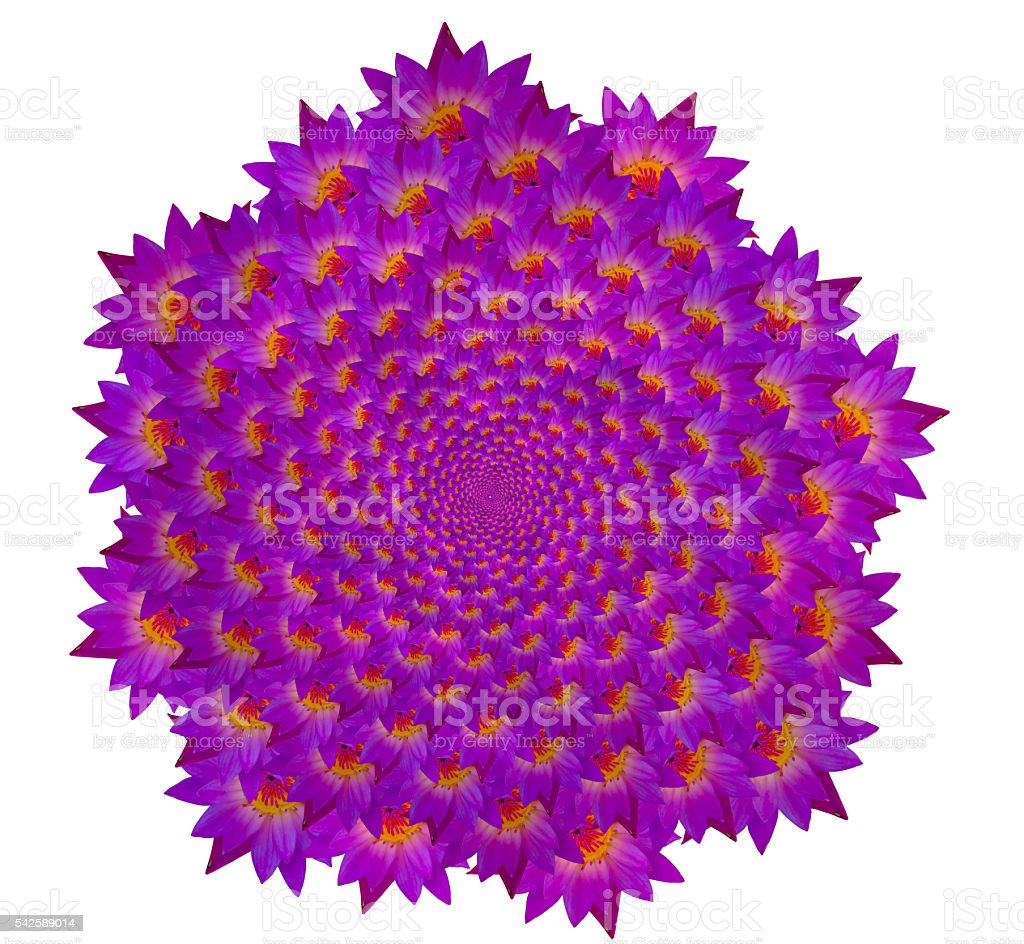 abstract Seamless flower pattern background stock photo