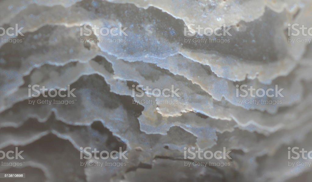 Abstract Seashells Extreme Close Up - background, backdrop, macro stock photo