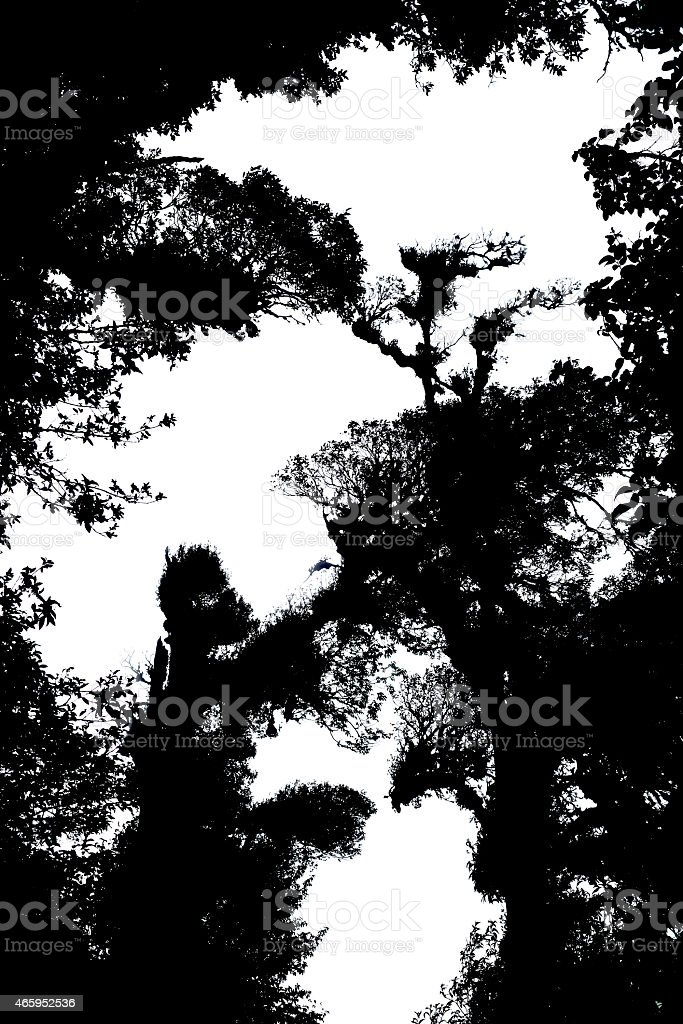 abstract shade black and white royalty-free stock vector art