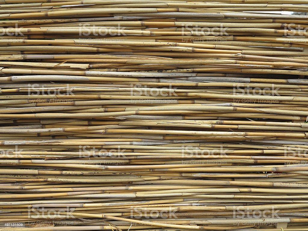 Abstrato amarelo textura de fundo de Bambu foto de stock royalty-free