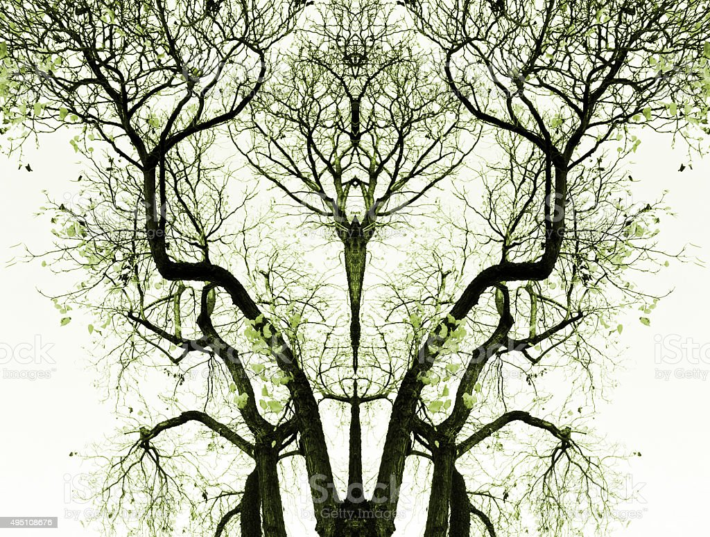 Abstract tree background royalty-free stock photo