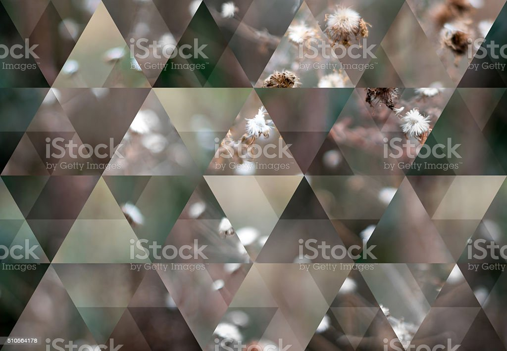 Abstract triangle shaped background: Dry dead winter flowers background stock photo