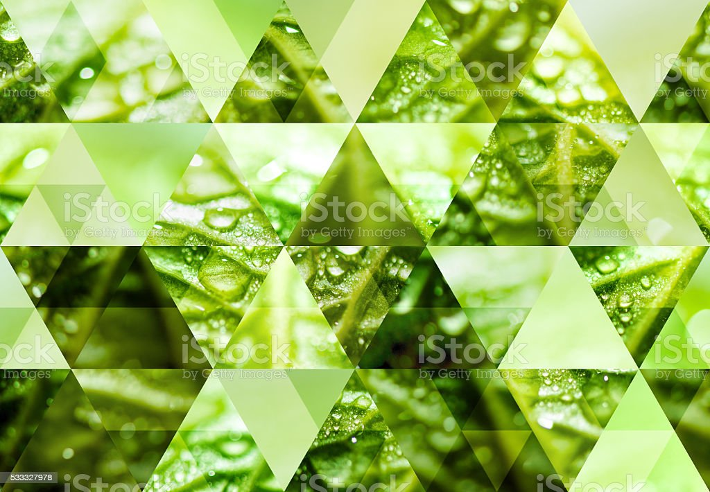 Abstract triangle shaped background: Wet green leaf with drops stock photo