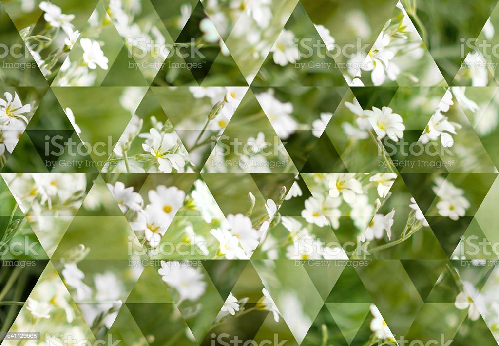 Abstract triangle shaped background: Wild grass and flowers stock photo