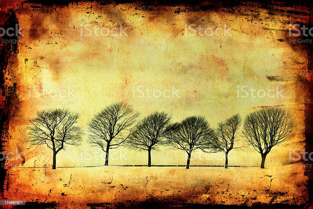 Abstract Winter Trees royalty-free stock photo