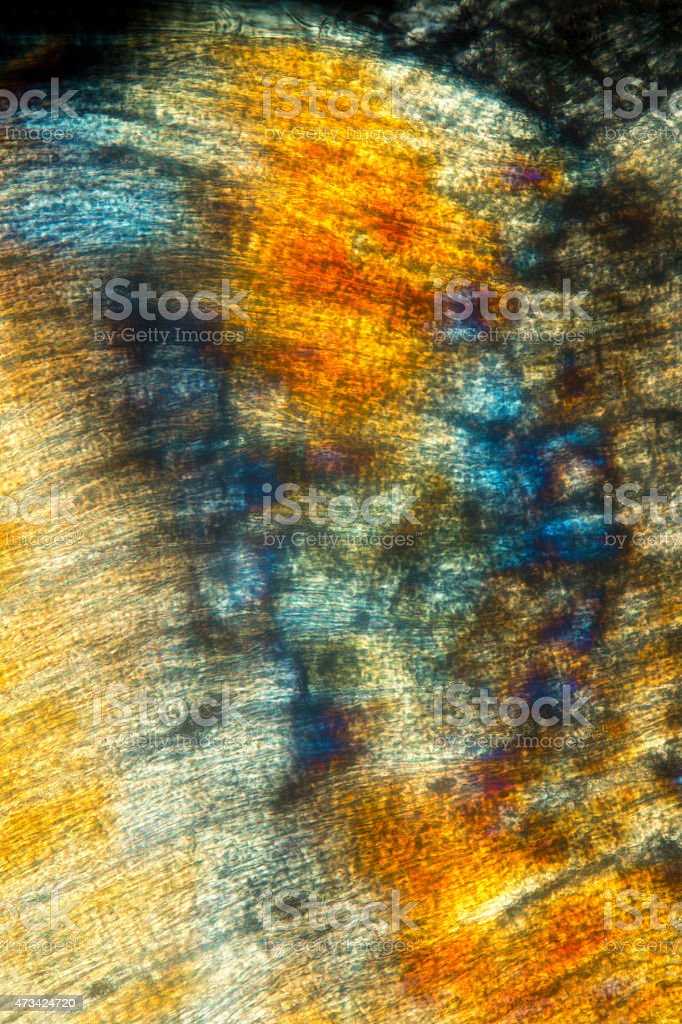 Abstract,polarizing micrograph of muscle from an earthworm. stock photo
