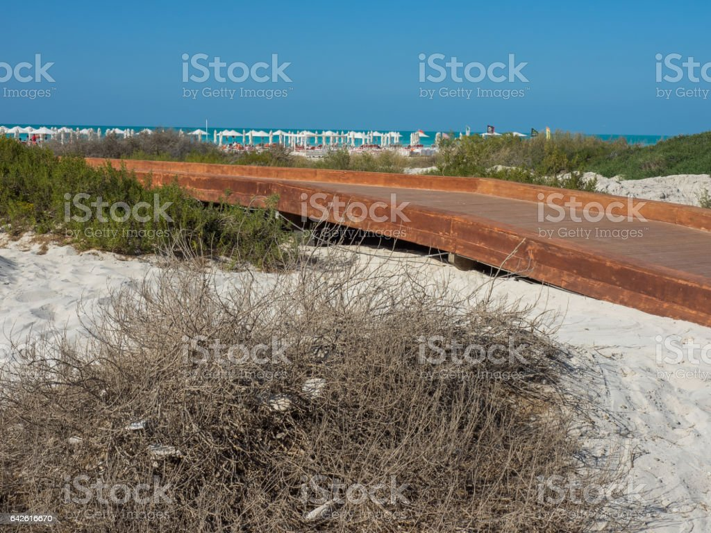 abu dhabi beach stock photo