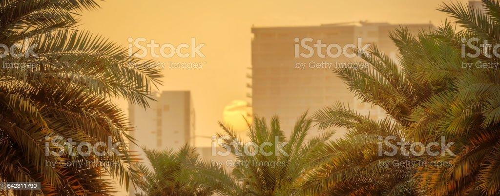 Abu Dhabi sunset stock photo