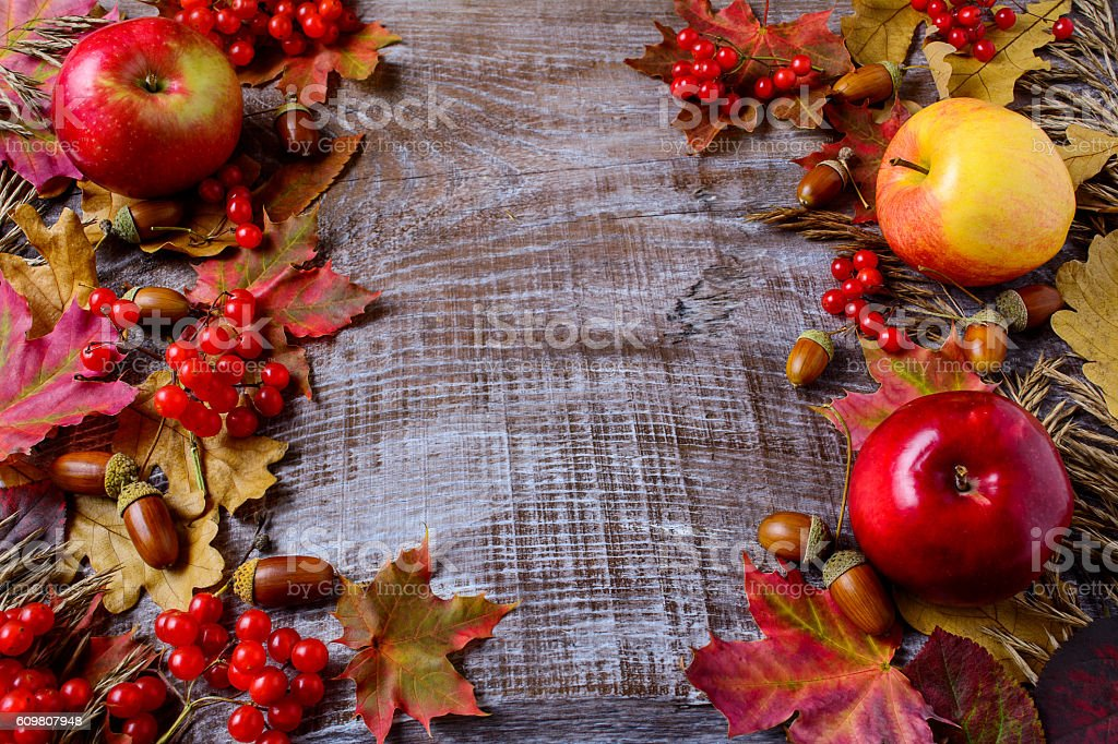 Abundant harvest concept with apples, acorns, berries and fall l stock photo