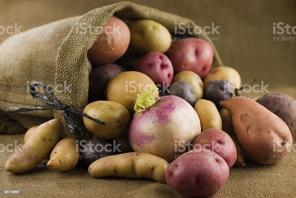 Abundant Root Vegetables royalty-free stock photo