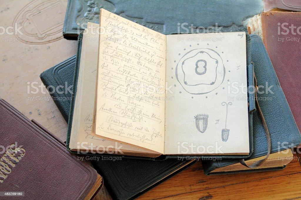 academic sketch stock photo