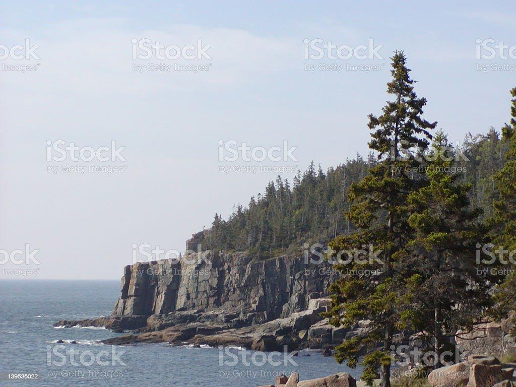 Acadia cliff royalty-free stock photo