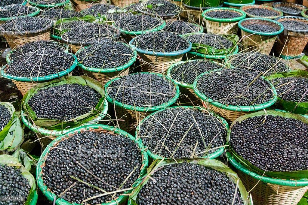 Acai fruit from the Amazon stock photo