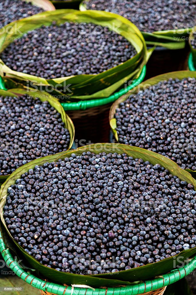 Acai fruit from the Amazon stock photo