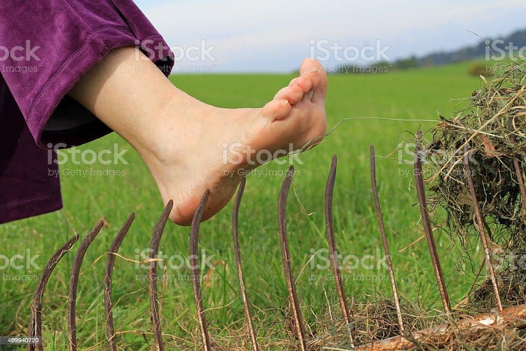 Accident risk when gardening stock photo