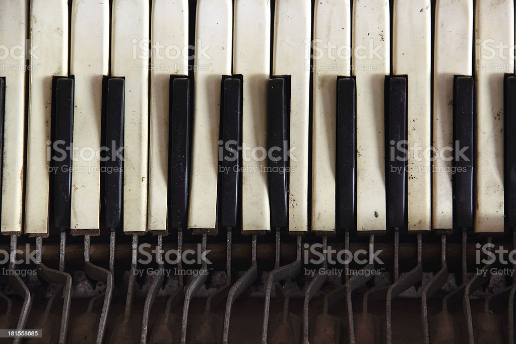 accordian keyboard royalty-free stock photo