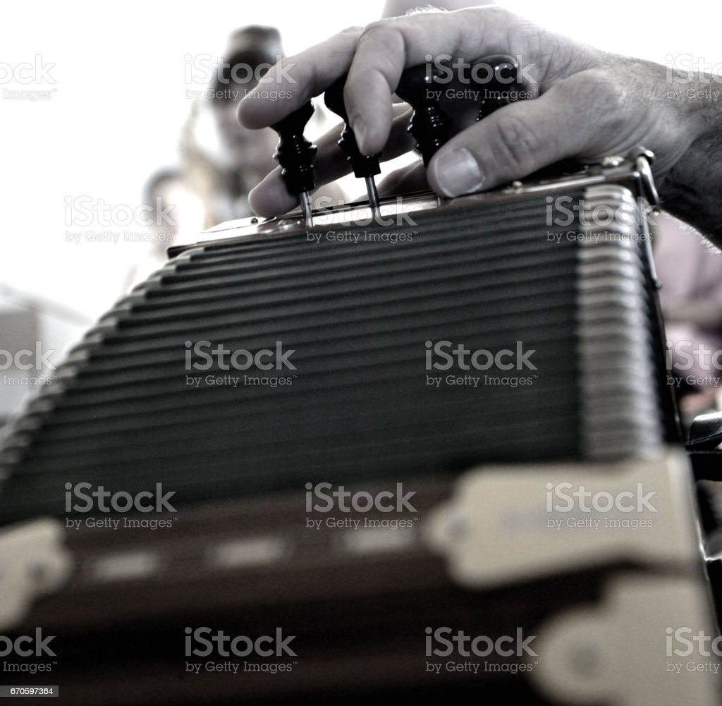 Accordian stock photo