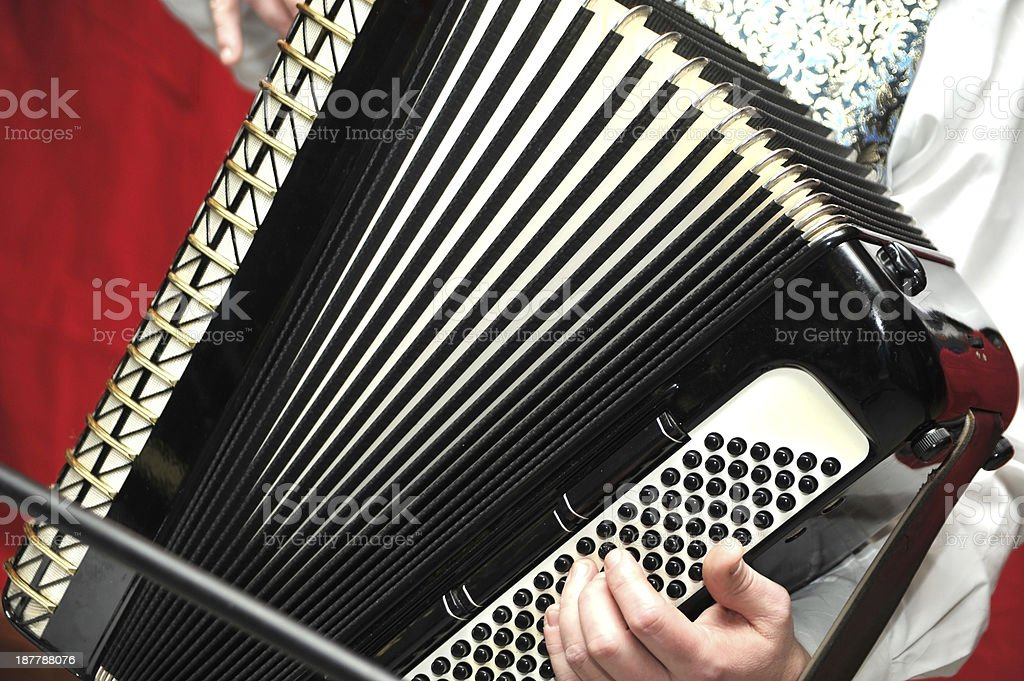 accordion player in action stock photo