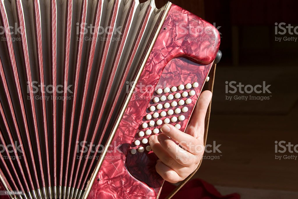 Accordion Player stock photo